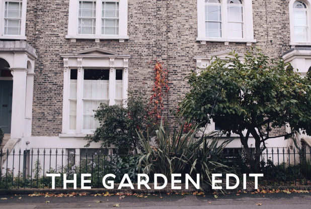 The-Garden-Edit