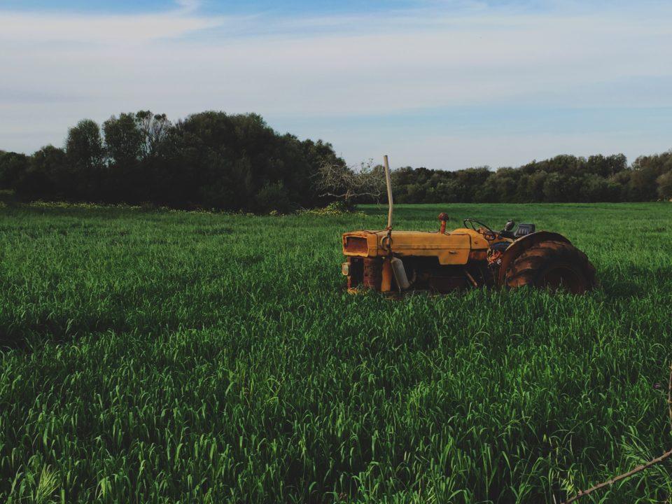 農業・農園・林業・水産業用WordPressテンプレートおすすめ5選(日本語・スマホ対応・有料テーマ)